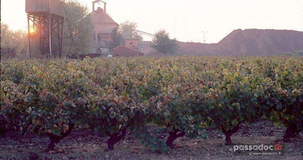 Mine de bauxite couche de soleil a brignoles var vignes