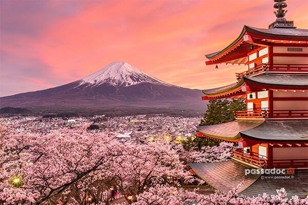 Thumbnail-Japon